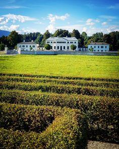 In der Nähe von Velden amWörtherseebefindet sich nicht nur der beliebteTierpark Rosegg, sondern gleich nebenan auch das Schloss Rosegg, in dem seit 2019 ein schmuckes Cafè eingerichtet wurde. Es ist damit eines der wenigen öffentlich zugänglichen Schlösser des 18. Jahrhunderts inKärnten. #kärnten #oesterreich #austria #austrianimages #carinthia #carinzia #travelaustria #castles #castello Kaiser Franz, Klagenfurt, Labyrinth, Vineyard, Outdoor, Villach, Types Of Animals, Exploring, Road Trip Destinations