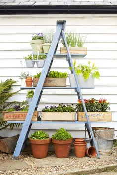DIY Ladder Planter - Patio Garden DIY