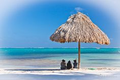Ambergris Caye Beach Scene