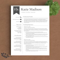 Free Editable Teacher Resume Template  Tpt Free Lessons