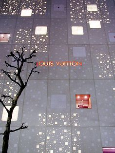 Louis Vuitton Flagship store...LOVE the outside