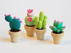 dekorative kaktus