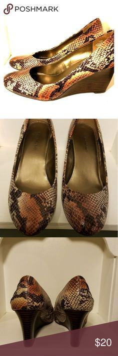 25fdc3784f7e Bandolino Snake Charmer Wedge Browns and coppers help bring this snake print  wedge to life!