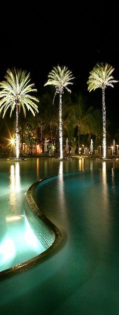 Cool Pool - Poolandspa.com ughh look at those palm trees! I need them!