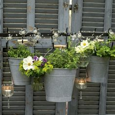 love these planters handing on the old shutters!