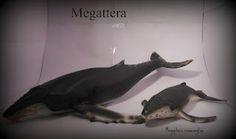 Megattera
