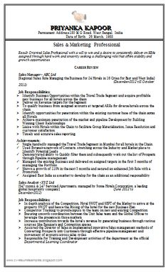 free download sales marketing resume httpwwwresumecareerinfo - Sales And Marketing Resume