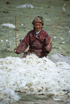 A Mongolian nomadic herder makes felt by using two thin sticks to fluff a pile of wool before wetting it. It will then be rolled in a skin and dragged behind a horse to compact the fibers. Location: ALTAY MOUNTAINS, MONGOLIAN PEOPLE'S REPUBLIC.