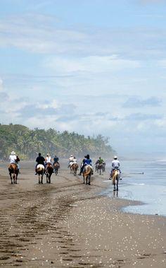 Saddle up on a horseback riding tour along the beach.