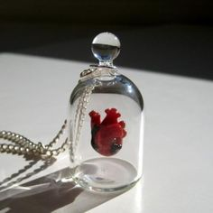 Items similar to Anatomical Heart Jewelry Necklace Heart in a Jar on Etsy Heart Jewelry, Cute Jewelry, Jewelry Accessories, Jewelry Necklaces, Bottle Charms, Bottle Necklace, Glass Necklace, Glass Case Of Emotion, Internet Trends