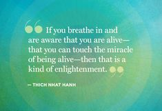 "If you breathe in and are aware that you are alive-- that you can touch the miracle of being alive-- then that is a kind of enlightenment."" -Thich Nhat Hanh #quote"
