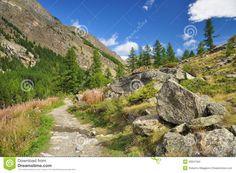 Gran Paradiso National Park   Mountain path in the Gran Paradiso national park. Aosta Valley, Italy.