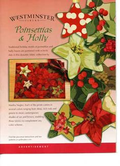 Wildly popular free placemat patterns from Quiltmaker. Enjoy! http://www.quiltmaker.com/blogs/quiltypleasures/2010/10/a-free-placemat-pattern-happy-holidays-early/