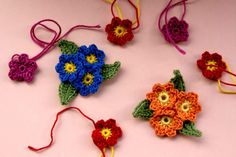 flowers5...These are so pretty ! There is a free pattern!