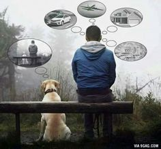 Sometimes we should be like our dogs