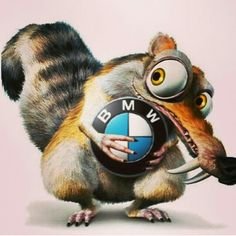 Scrat (also known as The Scrat and Squeak Attack) is an acorn-obsessed saber-toothed squirrel, one of the main characters in the Ice Age film series, and the main protagonist in the shorts, Gone Nutty, No Time For Nuts and Scrat's Continental Crack-up. Motos Bmw, Bmw Motorcycles, Vintage Motorcycles, Bmw Logo, E36 Cabrio, 1200 Gs Adventure, Carros Bmw, K100, Bmw Dealer