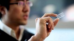 Organs on Chips -- Wyss Institute ... we have this stuff and I'm pretty sure that we've had it for a long while. I really, Really, REALLY wish that we were using it every single time we feel the need to test anything from cosmetics to hygiene products to pharmaceutical products to ...