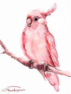 Rosa Kakadu Original Aquarellzeichnung 12 X 9 Rosa