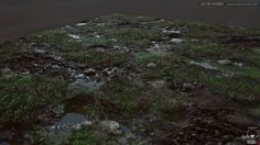 ArtStation - Grass with Rocks and Puddles, Jacob Norris