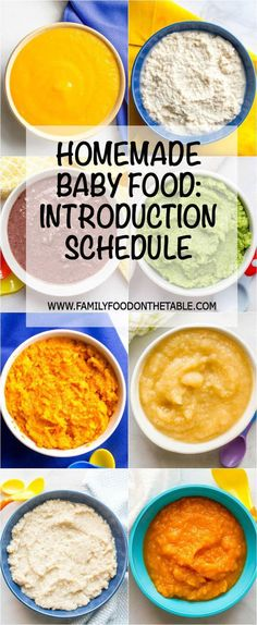 Homemade baby food introducing solids schedule -- a sample schedule of what baby foods to introduce at different stages   www.familyfoodonthetable.com