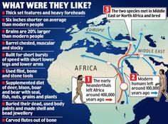 """""""Experts believe that Neanderthals and modern humans shared a common ancestor in Africa. Around 400,000 years ago early Neanderthals left Africa and headed for Europe and Asia. However, our ancestors stayed behind, and evolved into modern humans."""""""