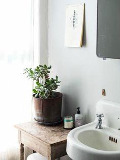 Pia decorada com um vaso de plantas