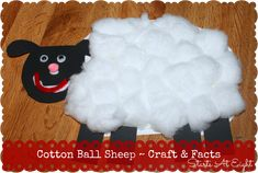 Cotton Ball Sheep Craft & Facts - includes free printable templates.