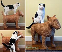 Canine Cat Scratcher