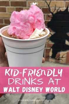 Heading to Disney World during the heat filled months of Florida means trying to dins fun drinks for you and the kids! Here's all our favorite drinks across all four Walt Disney World parks so you can make sure to have kid friendly drinks to beat the heat at Walt Disney World. #disneyvacation #disneytips #waltdisneyworld #polkadotpixies