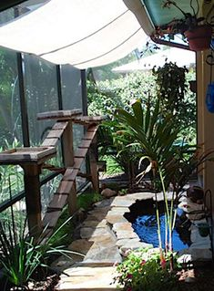 I would be in this catio all day long.