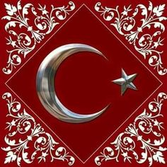☾✫⭐ Ottoman Turks, Foil Art, Islamic Art Calligraphy, Islamic Pictures, Ottoman Empire, Flower Frame, Cool Wallpaper, Istanbul, Flower Designs