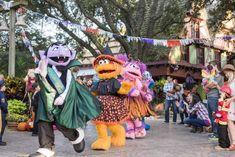 Sesame Street Kids' Weekendsdedicado para crianças, realizado no SeaWorld San Diego aossábados e domingos de outubro com os adoráveis personagens da Sesame Street, como Abby Cadabby, Big Bird, Elmo, Grover, Rosita e muitos outros. #SesameStreetKids'Weekends #SeaWorldSanDiego Halloween Parade, Halloween Season, Halloween Fun, Sea World, Elmo, San Diego, Busch Gardens Tampa Bay, Toddler Nap, Disney Tickets