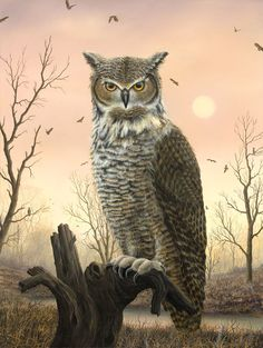 Bubo, 2009 - Robert Bissell