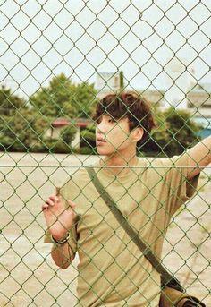 Kang Seungyoon (WINNER) Kang Seung Yoon, Seungyoon Winner, Song Minho, Korean Wave, Korean Boy Bands, Kpop Aesthetic, Yg Entertainment, Kpop Groups, Bigbang