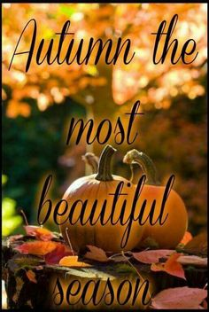 Can't wait for fall Autumn Day, Hello Autumn, I Fall, Winter, Autumn Song, Autumn Leaves, October Country, Foto Gif, Autumn Scenes