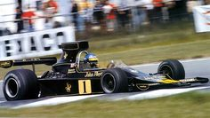 1974 Lotus 76 - Ford (Ronnie Peterson)