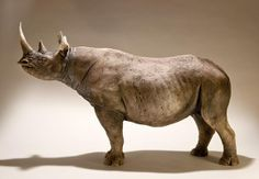 Rhino sculpture by Nick Mackman.