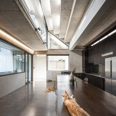 SO Architects has designed this bunker-like concrete house in the Thai city of Chiang Mai in a plot left empty for several years by the owner. Concrete Houses, Glass Floor, Interior Decorating, Interior Design, Architect House, Patio Roof, Open Plan Kitchen, Detached House, Decoration