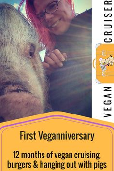 Vegan inspiration! Post on reaching this first milestone - a year of cruising, eating too many burgers and hanging out with fabulous pigs.