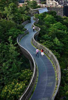 Лесная Дорога Фучжоу — трансгородская пешеходная эстакада в Китае