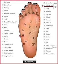 Some people consider foot reflexology charts to be just about a foot massage. However reflexology dates back at least years ago and has a history in culture of India, Egypt, China and Native American cultures. Reflexology Points, Reflexology Massage, Foot Massage, Alternative Therapies, Alternative Health, Alternative Medicine, Acupressure Chart, Acupressure Points, Foot Chart
