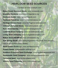 Non gmo seed companies