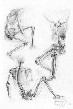 Exceptional Drawing The Human Figure Ideas. Staggering Drawing The Human Figure Ideas. Human Figure Drawing, Figure Drawing Reference, Anatomy Reference, Life Drawing, Figure Drawing Tutorial, Human Anatomy Drawing, Anatomy Study, Body Anatomy, Human Skeleton Anatomy