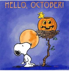 Snoopy and Woodstock Snoopy Halloween, Photo Halloween, Happy Halloween Pictures, Snoopy Christmas, Halloween Quotes, Thanksgiving Pictures, Halloween Cartoons, Halloween Images, Halloween Art