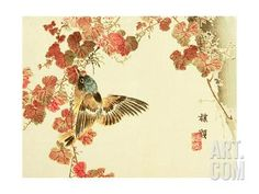 Flowers and Birds Picture Album by Bairei No.10 Giclee Print by Bairei Kono at Art.com