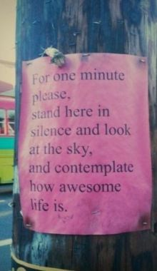 For one minute please, stand here in silence and look at the sky, and contemplate how awesome life is.