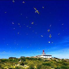 Medas Islands, natural paradise in Catalonia, Spain. Photo: Laura Núñez