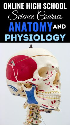 Online High School, High School Science, School Study Tips, Anatomy And Physiology, Homeschool, Teaching, Education, Homeschooling, Onderwijs