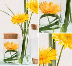 Getting the spring vibes of these sunny gerberas! Moreover, it's an easy DIY :) @Choicy-Gerbera