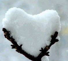 """Play """"I Spy"""" to see what your family can spot hidden in nature this beautiful season. Check out this #snow #heart!"""